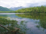Фото 3. Окунёвый залив озера Фролиха