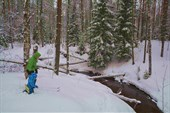 На берегу реки Кожицы