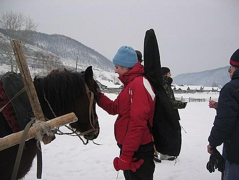 """""""заговаривание"""" лошади"""