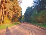 Лесные дорожки под Несвижем.
