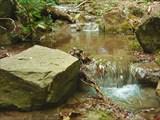 К р. Алака и её водопадам я подошёл уже с костылём в руке
