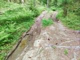 Дорога к оз. Промежуточному