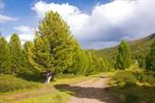 На перевале Арой.