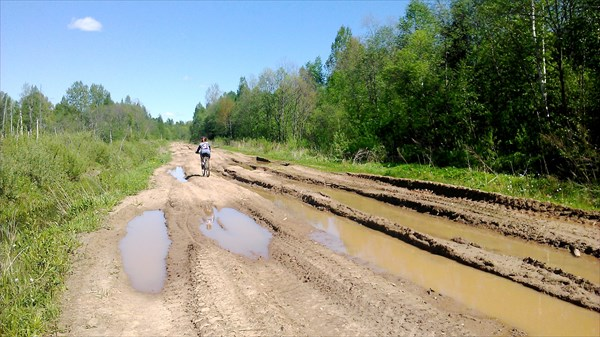 Дорога к Оскую. Бывшая насыпь ж.д.