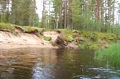 берега в нижнем течении