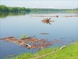 После наводнения по реке несет мусор.
