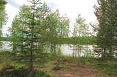 Карелия. Озеро ниж. Карбисалми