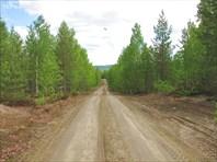 Дорога на Воттоваару из поселка Суккозеро