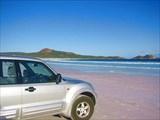 A226,_Shark_Bay_Marine_Park,_Western_Australia,_Shell_Beach,_200