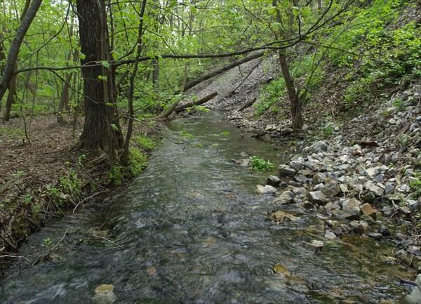 Почти таежная речка
