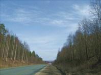 Дорога на Кондопогу