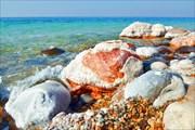 Соленые кораллы