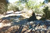 Турстоянка над деревней Кабак