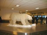 Встречающий в аэропорту