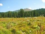 Гора Тушканчик вид с тропы
