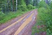 Липкости на дороге Верхняя Сысерть - Даутово