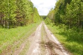 Дорога Верхняя Сысерть - Даутово