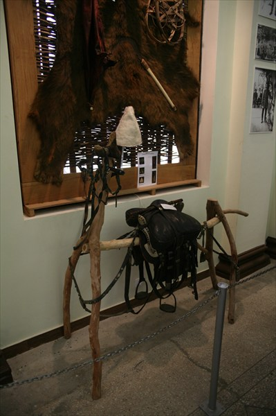 Абхазская лошадь