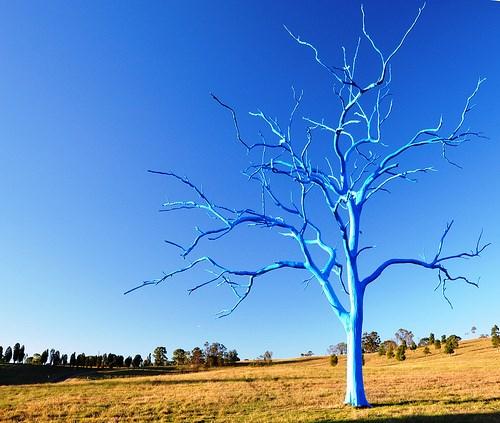 Bluetree4