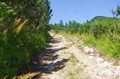 Широкая дорога к обсерватории на г. Поп-Иван