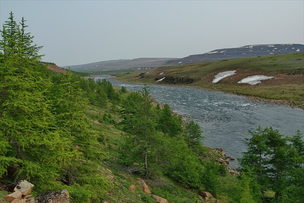 Вначале лес появляется на левом берегу