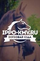 Новотерский Конный завод