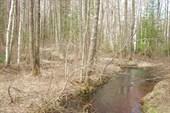 Река Лазаревка