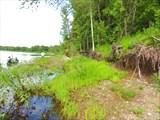 Бечевник вдоль берега