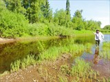 Рыбалка в заливчике