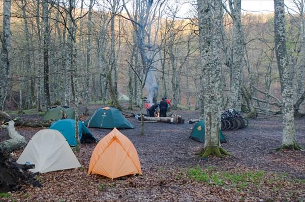 Лагерь в лесу.
