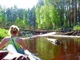 Река Гусь. Май, 2008. Гусь не хочет становиться курортной рекой.