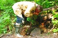Фото 6. Отдых у лесного ключа