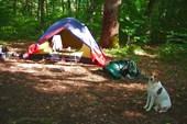 Наша палатка на окраине лагеря `Белая речка`