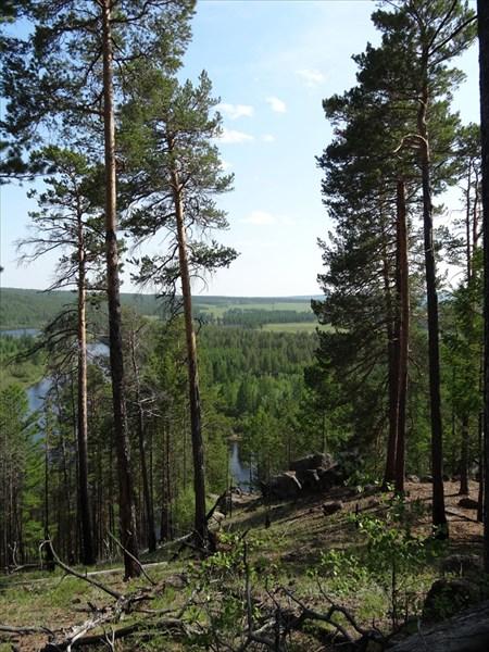 предложения витим лес давыдово фото белорусского