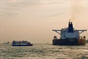 Оживленное судоходство в водах Босфора