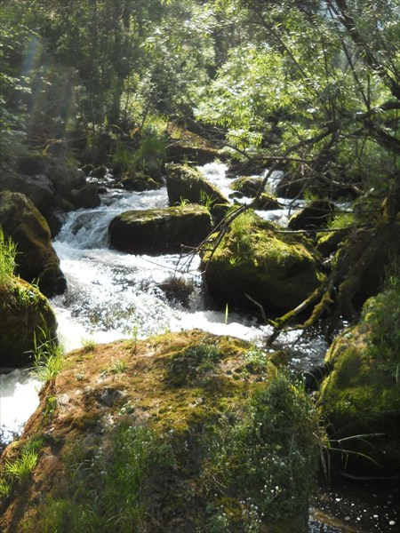 Пороги нижнего течения Калычака.