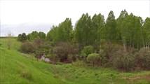 Река в Малой Таве