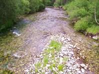Река Куртун
