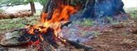 Тепло огня
