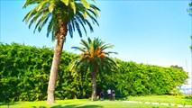 Парк в Пицунде