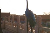 Журавли в Китае считаются символом долголетия