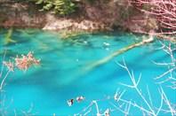 Аватарное озеро