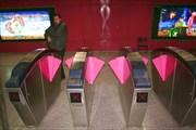 Такие вот розовые крылышки вместо турникетов в метро