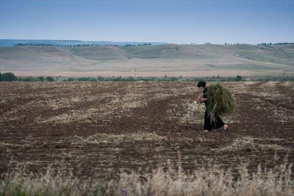 Чеченка в поле
