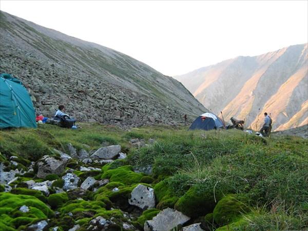 Лагерь установили в зоне альпийских лугов