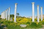 Саламис (античный город)