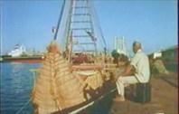 Прощание с Тигрисом-город Джибути