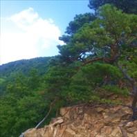Наумовские скалы