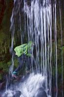 """Аттракцион """"водопад"""" в сикхском святом месте"""