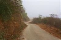Дорога из Мечуки в Алонг